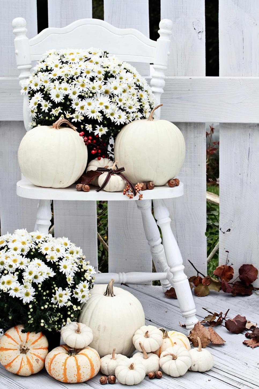 украсить тыкву цветами